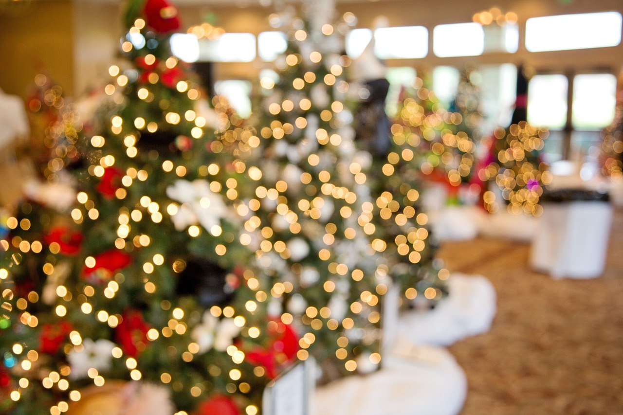 christmas-trees-1042542_1280